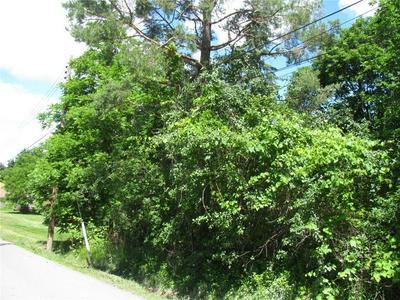 0 SYLVAN ROAD, Gorham, NY 14424 - Photo 1