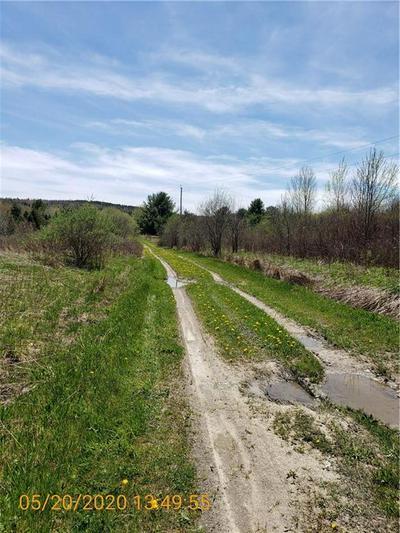 0 CAYWARD S ROAD, Prattsburgh, NY 14873 - Photo 1