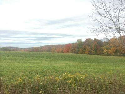 00 ROUTE 20 W, Eaton, NY 13408 - Photo 1