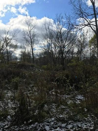 0 CHARLESTON CIR, Livonia, NY 14487 - Photo 2