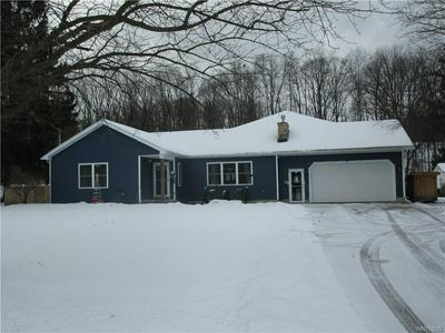 13816 ROUTE 62, Collins, NY 14034 - Photo 1