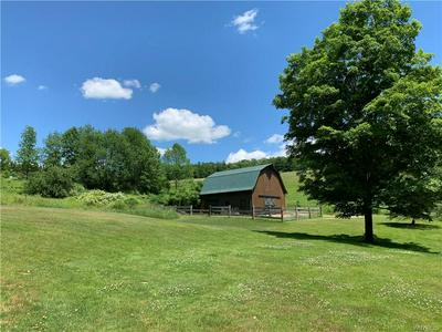 6460 WITCH HOLLOW RD, Ellicottville, NY 14731 - Photo 2