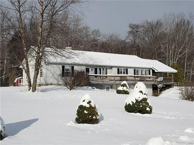 185 BUTTERFIELD RD, Lisle, NY 13835 - Photo 1