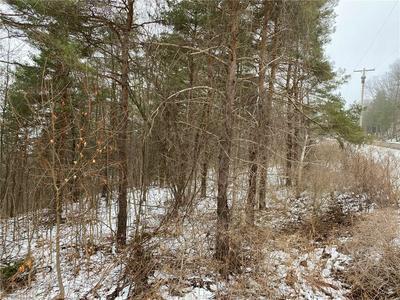 6600 S OLD BALD HILL RD, Canadice, NY 14560 - Photo 1