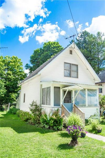 415 ERIE ST, Little Valley, NY 14755 - Photo 1