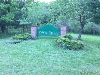 3 FAWN RIDGE DRIVE, Western, NY 13486 - Photo 1