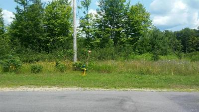 00 HOGS BACK ROAD, Hastings, NY 13076 - Photo 1