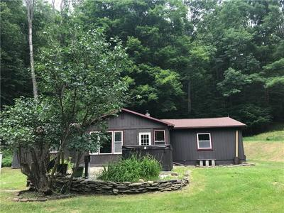 6217 CUNNINGHAM CREEK RD, Hornellsville, NY 14823 - Photo 1