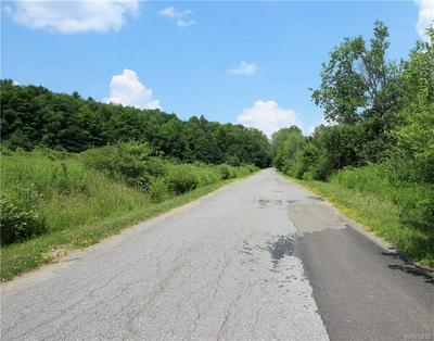 0 MUTTON HOLLOW ROAD, Little Valley, NY 14779 - Photo 2