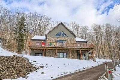 6709 UPPER RD, ELLICOTTVILLE, NY 14731 - Photo 1