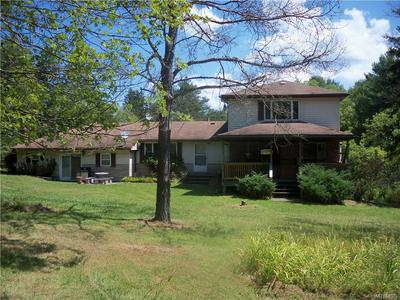 3215 BEAR CREEK RD, Machias, NY 14737 - Photo 2