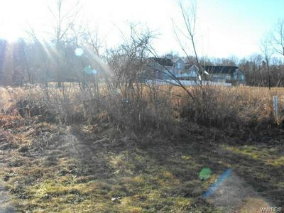 996 LITTLE VISTA DR, Lewiston, NY 14092 - Photo 2