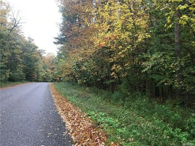 V/L HEATH ROAD, Colden, NY 14033 - Photo 2