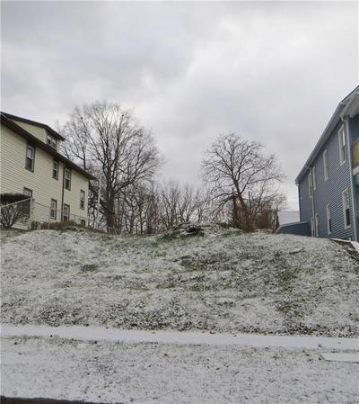 161 FLINT ST, Rochester, NY 14608 - Photo 1