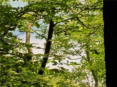 8436 RESERVOIR HILL RD, Urbana, NY 14840 - Photo 2