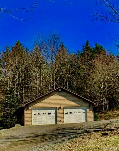 6890 HORN HILL RD, ELLICOTTVILLE, NY 14731 - Photo 2