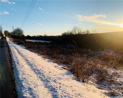 1437 ATWOOD RD, Summerhill, NY 13118 - Photo 2