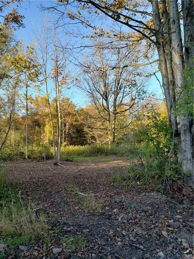LOT #1 SEYMOUR LANE, WESTMORELAND, NY 13490 - Photo 2