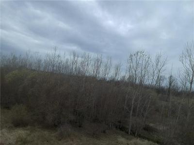 0 PETERSMITH ROAD, Kendall, NY 14476 - Photo 2