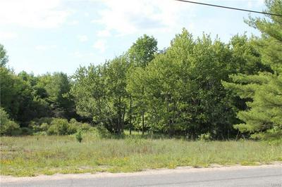 0 GRASS LAKE ROAD, Theresa, NY 13691 - Photo 1