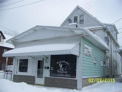 547 19TH ST, Niagara Falls, NY 14301 - Photo 1