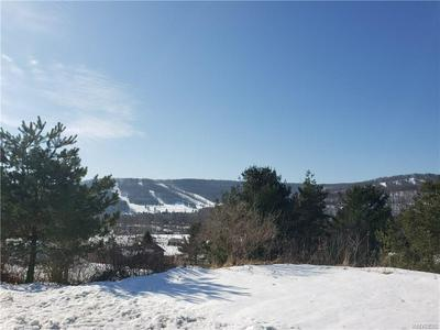 10 MCKINLEY DR # 12, ELLICOTTVILLE, NY 14731 - Photo 2
