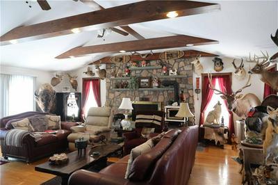 860 JOHNSON HILL RD, Walton, NY 13856 - Photo 2