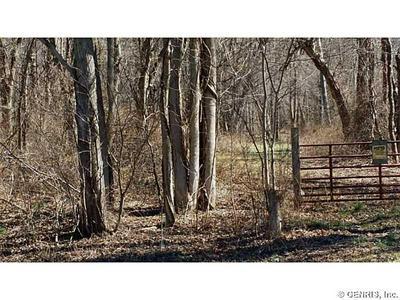 0 W PORT BAY ROAD, Huron, NY 14590 - Photo 2