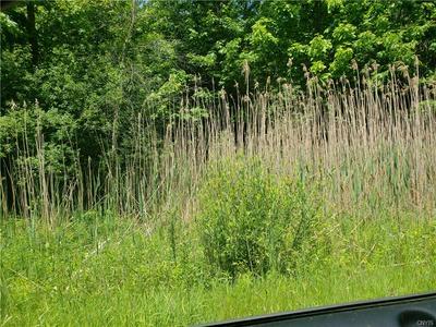 98 RIVERSIDE POINTE DRIVE, Albion, NY 14411 - Photo 1