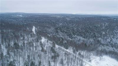 175 ACRES LANG ROAD, Spencer, NY 14883 - Photo 1