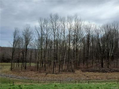 1 TRAIL HEIGHTS, Ellicottville, NY 14731 - Photo 1