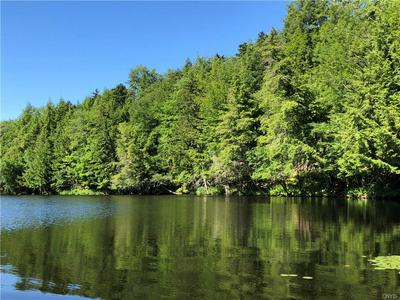 10968 CAMP GROUND RD, Forestport, NY 13338 - Photo 1