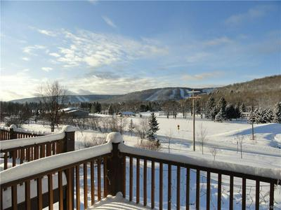 13 MOUNTAINVIEW UPPER, Ellicottville, NY 14731 - Photo 2