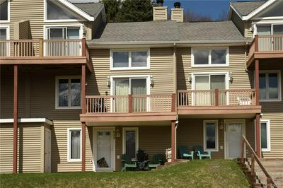 523 DEER CROSSING RD, Ellicottville, NY 14731 - Photo 1