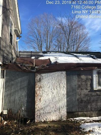 7160 COLLEGE ST, LIMA, NY 14485 - Photo 2