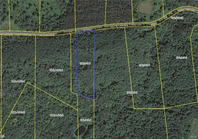 0 COOK HILL ROAD, Herkimer, NY 13350 - Photo 1