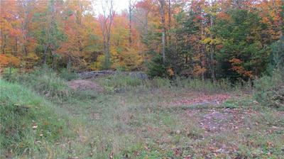 000 YOUNGS MILL ROAD, Croghan, NY 13327 - Photo 2