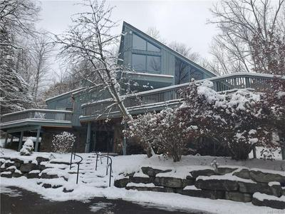 6678 HOLIDAY VALLEY RD, ELLICOTTVILLE, NY 14731 - Photo 1