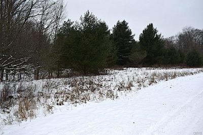 0 WHEELER ROAD, Williamstown, NY 13493 - Photo 1