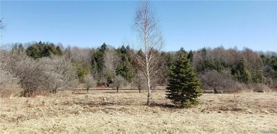 6149 CURRIERS RD, ARCADE, NY 14009 - Photo 2