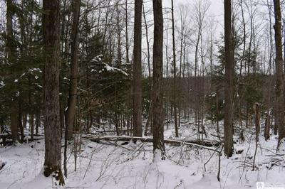 0 STATE LINE & ROUSE HILL, French Creek, NY 14724 - Photo 2