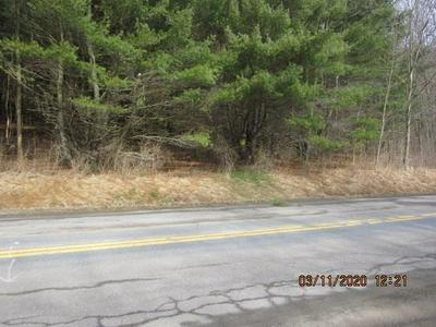 0 COUNTY ROUTE 74 ROAD, Prattsburgh, NY 14873 - Photo 1
