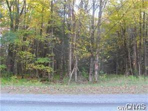 919 STONE HILL RD, Williamstown, NY 13493 - Photo 2