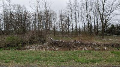 V/L CARNEY S ROAD, Newstead, NY 14001 - Photo 1
