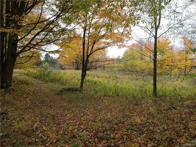 0 EDDY ROAD, Mansfield, NY 14755 - Photo 2