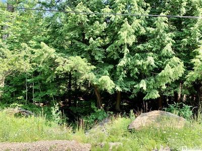 12731 SAWMILL RUN RD, South Valley, NY 14738 - Photo 2