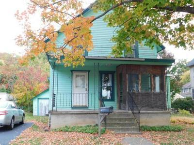 17 PARK ST, Collins, NY 14070 - Photo 1