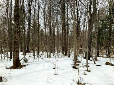 0 STATE ROUTE 13, Williamstown, NY 13302 - Photo 1