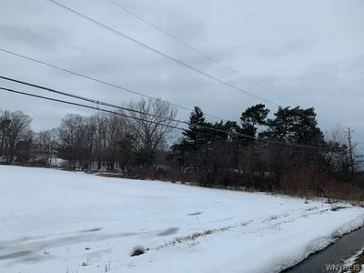 0 W. LAKE RD., PERRY, NY 14530 - Photo 2