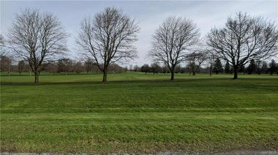 V/L CARNEY S ROAD, Newstead, NY 14001 - Photo 2